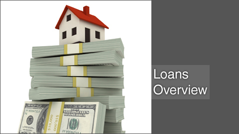 Loans Overview - Lavaee Law Group